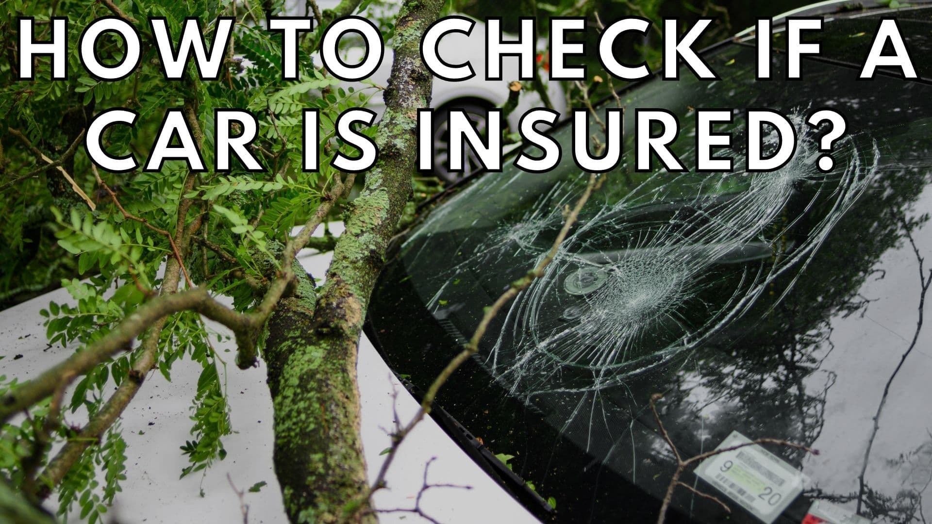 How to check if a car is insured?
